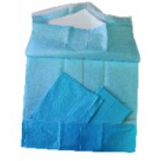 Babero con bolsillo inferior Celulosa Blanca + Polietileno Azul. 41 x 54 cm